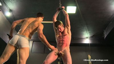 Dream Boy Bondage free